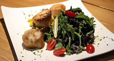 Seared Scallops with Mixed Salad Greens